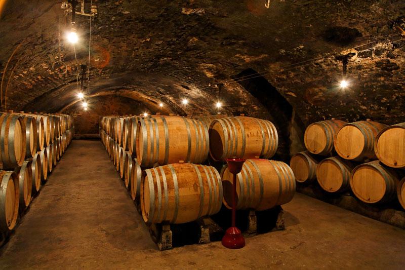 cave a vin bourgogne